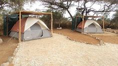 Adventure Camping Safari in the Ol Kinyei Wildlife Conservancy adjacent to the Masai Mara National Reserve Outdoor Camping, Outdoor Gear, Game Reserve, Campsite, Lodges, Kenya, Places To Travel, Safari, Wildlife