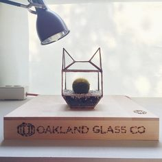 An ode to @cattownoakland - we can't wait to visit! #catterrarium #cat #terrarium #stainedglass #solder #soldering #locallymade #oaklandmade #eastbay #madeintheusa