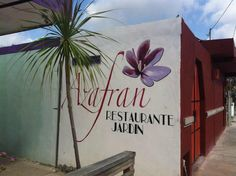 Azafran Restaurant, Tulum (we loved treating ourselves to this restaurant for breakfast, not super cheap, I think like $10/person but yummy. Germans own it. Funny thing is that it is now #1 on TA)