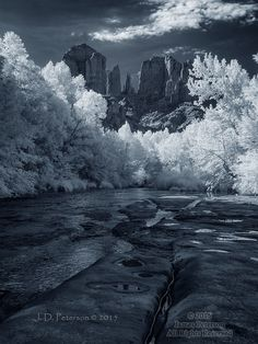 Looking Up to Cathedral Rock (Infrared)  ©2015 James D. Peterson