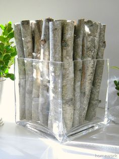 homework: Etceteras: birch branches and boxwood