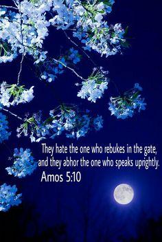 Amos 5:10