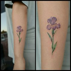 d81b5ab5e What does iris tattoo mean? We have iris tattoo ideas, designs, symbolism  and we explain the meaning behind the tattoo.