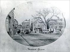 Harvard Square - DiscoverHarvardSquare.com
