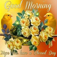 Good Morning, Hope You Have A Blessed Day morning good morning morning quotes good morning quotes good morning greetings Blessed Morning Quotes, Tuesday Quotes Good Morning, Good Morning Happy, Morning Inspirational Quotes, Good Morning Picture, Good Morning Greetings, Monday Blessings, Morning Blessings, Good Morning Images Flowers