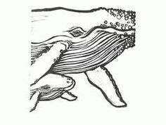 best linoleum for block printing whale - Google Search