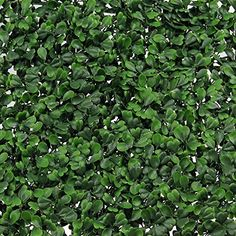 Decorative Fences - Synturfmats Artificial Boxwood Hedge Privacy Fence Screen Greenery Panels  Two Tone Green 20x20 Pack of 6pcs -- Continue to the product at the image link. (This is an Amazon affiliate link)