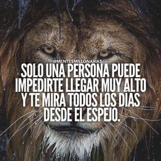 aprende mas en #pensamientos #constancia #reflexiones #lavidaesbella #armonia #consejos