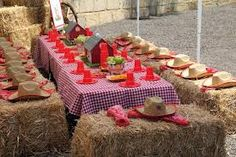 barnyard party ideas - Google Search