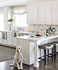 Contemporary White Kitchen Peninsula