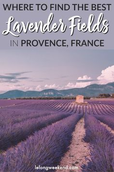 If you're heading to Provence to experience the incredible lavender fields, read this first! This detailed guide gives you the low down on where to go to see the best lavender fields in Provence, France Europe Destinations, Europe Travel Guide, Holiday Destinations, Travel Guides, Travel Hacks, Aix En Provence, Provence France, Photo Tag, Places To Travel
