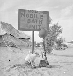 A soldier's dog looks after his master's boots and rifle while he takes a shower provided by a mobile bath unit in the Western Desert, 4 March 1942.