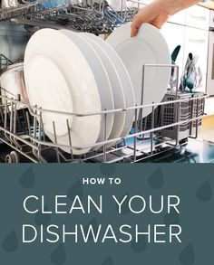 Yes, you do in fact need to clean your dishwasher. Here's how to do it in 3 simple steps.