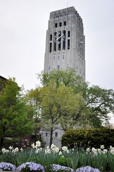 Bell Tower - Ann Arbor, Michigan. So pretty in the spring.