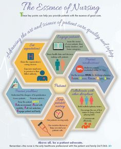 The Essence Fo Nursing Infographic