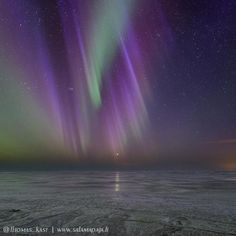 It's always special to see #auroras on the frozen #gulfofbothnia #finland #suomi