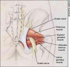TweakFitSacroiliac Joint Pain | TweakFit