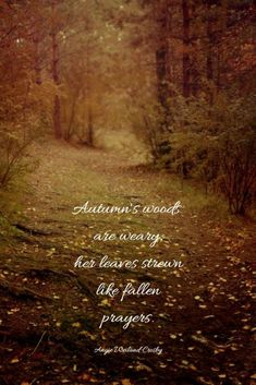 You will love these beautiful Autumn Quotes on stunning images because they will enchant your soul. Enjoy the magic of these Fall Quotes! Inspirational Artwork, Short Inspirational Quotes, Fall Pictures, Nature Pictures, Beautiful Pictures, Summer Quotes, Fall Quotes, Fall Sayings, Motivational Quotes For Students