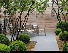 architectural shrubs - Google Search Minimalist Garden, Shrubs, Garden Landscaping, Fence, Sidewalk, Exterior, Patio, Landscape, Architecture