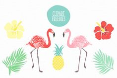 6 Vector tropical patterns + Clipart - Patterns - 5