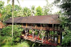 Tropical Traditional House by Tim Hardy in Bali Thai House, Cabana, Bali Style Home, Jungle House, Jungle Tree, Tropical Architecture, Bali Architecture, School Architecture, Bali Fashion