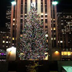 The Rockefeller Center 2012 Christmas Tree! #NYC #RockCenterXmas