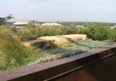Image result for green roof with silver ponyfoot