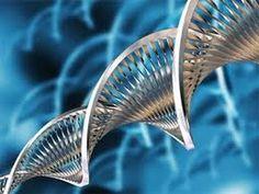 EPIGENÉTICA: LA NUEVA REVOLUCIÓN BIOLÓGICA - YouTube