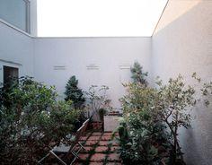spaced pavers + wild growth     Adolf Krischanitz- Sperl house, Zurndorf 2001. Photos...