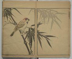 Kinpaen (Bunpō) Picture Album (Kinpaen gafu 金波園画譜). 1820. Metropolitan Museum of Art (New York, N.Y.). Department of Asian Art.  Japanese Illustrated Books. #Japan #illustrations