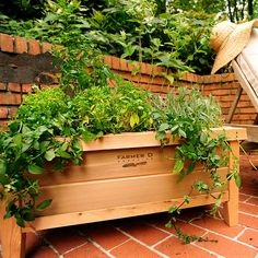 The Farmer D Urban Planters are hand made in Atlanta,GA from sustainably harvested, FSC certified Western Red Cedar. Perfect for growing herbs, vegetables and f Urban Planters, Cedar Planters, Wooden Planters, Large Planters, Garden Planter Boxes, Wood Planter Box, Potted Garden, Rectangular Planter Box, Cedar Garden