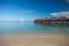 Tucked between two bays on the island of Moorea, the Hilton Moorea Lagoon Resort and Spa features overwater bungalows with sunrise and sunset views, making it an ideal romantic escape. Bungalow Resorts, Air Tahiti, Overwater Bungalows, Romantic Escapes, Explorer, White Sand Beach, Beach Fun, Resort Spa, Beautiful Places
