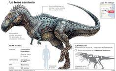elaleph.com :: Dinosaurios y Paleontología. Websites y novedades.