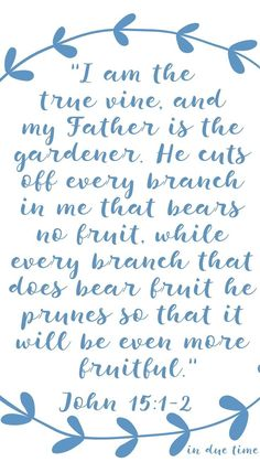 """""""I am the true vine, and my Father is the gardener. He cuts off every branch in me that bears no fruit, while every branch that does bear fruit he prunes so that it will be even more fruitful. Bible Verses Quotes, Faith Quotes, Mommy Quotes, Prayer Scriptures, Christian Living, Christian Faith, Christian Women, Vine And Branches, True Vine"""