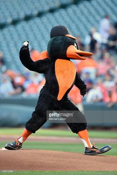 The Bird at Camden Yards, Aug 30, 2016