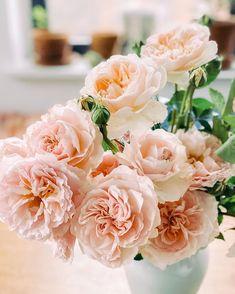 Flower Centerpieces, Flower Arrangements, Types Of Flowers, Floral Design, Art Floral, Happy Weekend, Floral Bouquets, Organic Gardening, Cherry Blossom