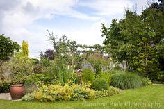 Tuinreportage in Waddinxveen voor BuitenBuiten Hoveniers Plants, Plant, Planting, Planets