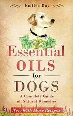 free ebook with lots of recipes for using essential oils with dogs