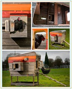 Reminiscent of a style camper, Modern Coops are made from recycled cedar with a choice of durable metal or fiberglass roof panel (easily converted to a living roof as well). The entire coop is mobile, to allow the yard a chance to rest after all of Fiberglass Roof Panels, Fibreglass Roof, Georg Christoph Lichtenberg, Living Roofs, Raising Chickens, Pet Chickens, Rabbits, Down On The Farm, Chickens Backyard