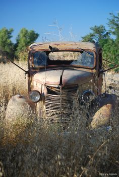 Vintage Pickup Trucks, Old Trucks, Abandoned Houses, Abandoned Vehicles, Chevy Chevelle Ss, Rust In Peace, Rusty Cars, Old Barns, Barn Finds
