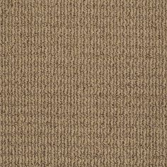 shop stainmaster trusoft willow bark berber carpet at lowescom