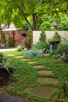 DIY garden path with random-shaped flagstones and ground cover plants as filler