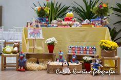 Encontrando Ideias: Festa Galinha Pintadinha!!!