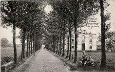 Pesserstraatweg