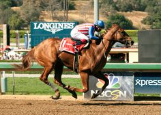 Dortmund (Martin Garcia up) rolls home in the Santa Anita Derby on April 4. (Photo courtesy of Santa Anita Park)