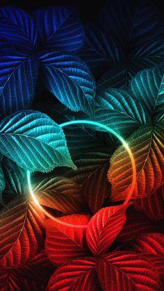 Nature Neon IPhone Wallpaper - IPhone Wallpapers