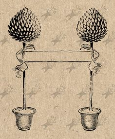 Topiary Trees in a pots Vintage image Instant Download Digital