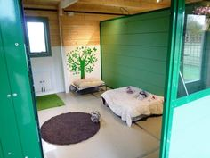 Hayfields Luxury Dog Hotel Boarding Kennels in Warwickshire