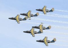 Swedish Air Force Team 60 is the aerobatic demonstration team.