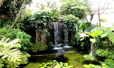 Public, Waterfall, Outdoor, Outdoors, Rain, The Great Outdoors, Waterfalls